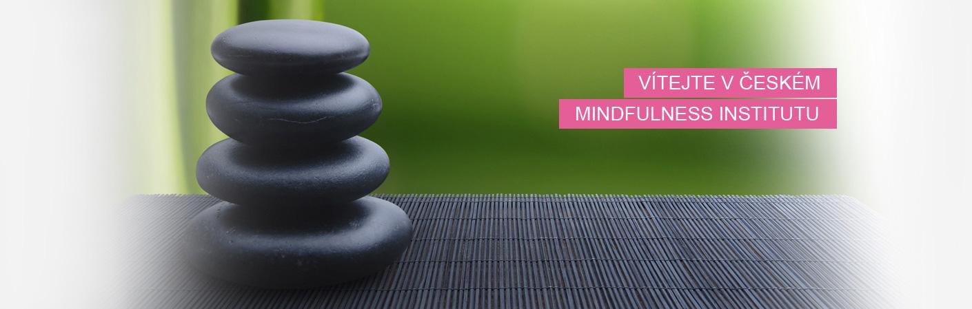 Český mindfulness institut